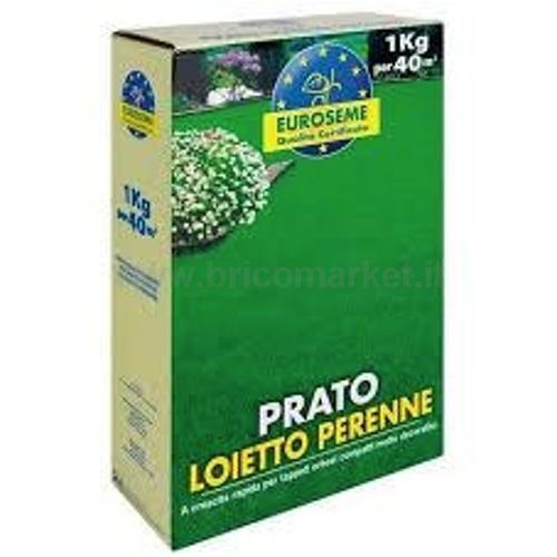 EUROSEME LOIETTO GR1000
