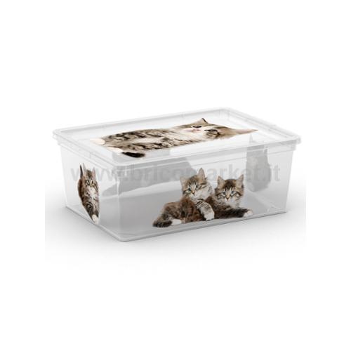 SCATOLA C-BOX STYLE XL CM 55X38,X30,5H PUPPY CON RUOTE